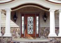 Personal Style Spray Coating Wrought Iron Glass Door With Hot Dipfabricated